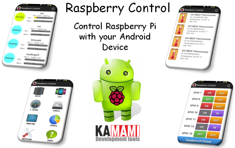 raspberry_control_2