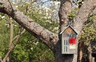Ein Insektenhotel für unseren Garten