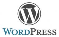 Weiße Seite mit der Meldung Fehler - Wordpress